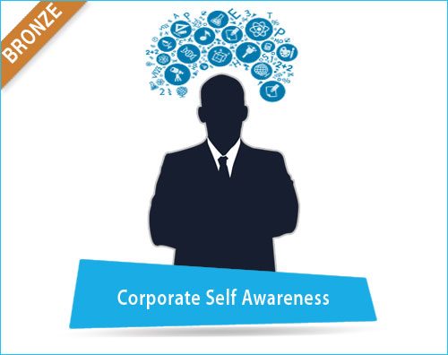 Corporate Self Awareness India