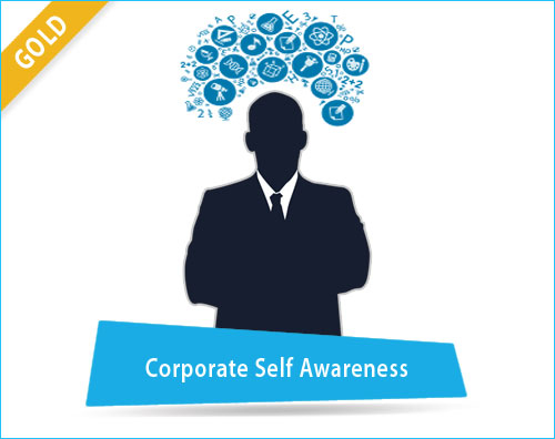 Corporate Self Awareness Assessment