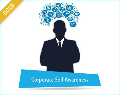 Corporate Self Awareness Assessment
