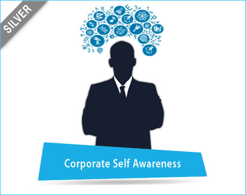 Corporate self Awareness Assessment Tool