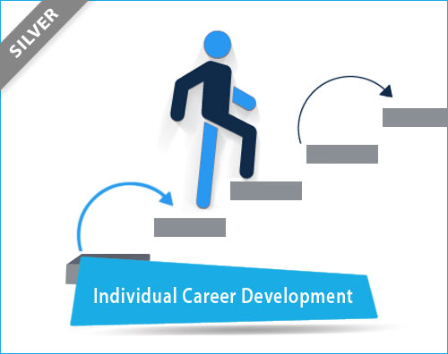 Individual Career Development Planning Tool
