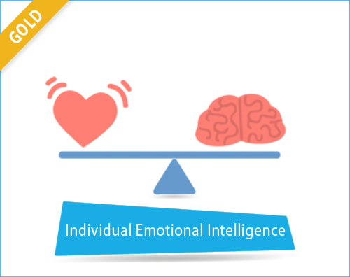 PRISM Individual Emotional Intelligene - Gold