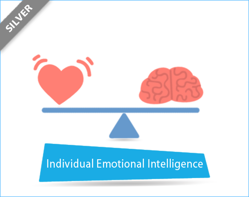 PRISM Individual Emotional Intelligene - Silver