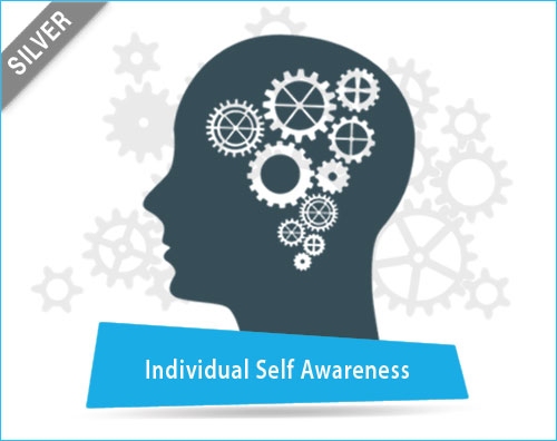 Individual Self Awareness Assessment Tool