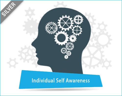 Individual Self Awareness Assessment Tool