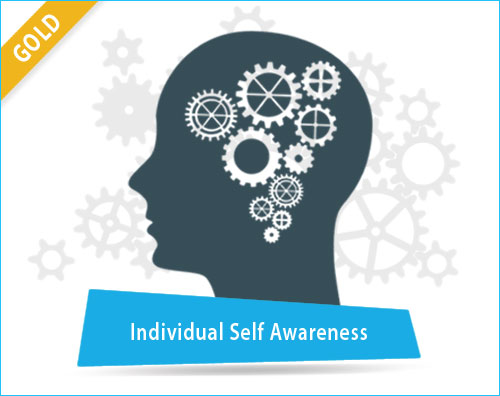 Individual Self Awareness Assessment Tool India