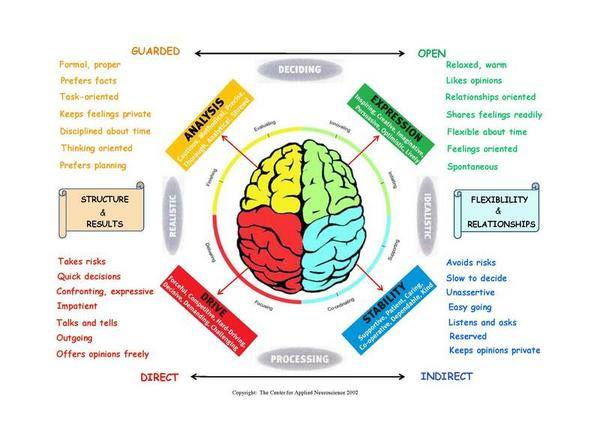 How human brain works